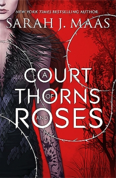 a court of thorns and roses burned me