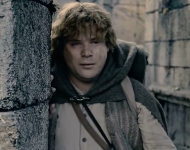 Sam from Lord of the Rings