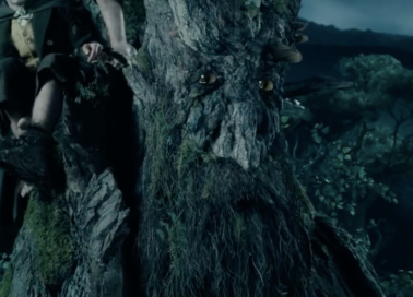 treebeard lord of the rings