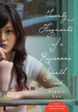 twenty fragments of a ravenous youth
